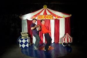 Circuschauffeurs