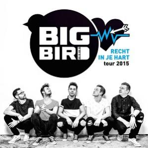 Big bird (klein formaat)